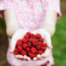 antiaging nutrition