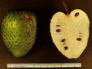 The Soursop Fruit