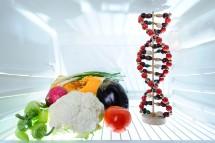telomere-length