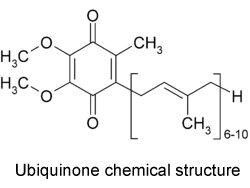 coenzyme-q10-source